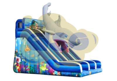 Toboggan double Requin
