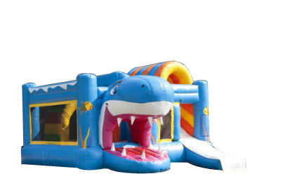 "MultiPlayground Gonflable ""REQUIN"""