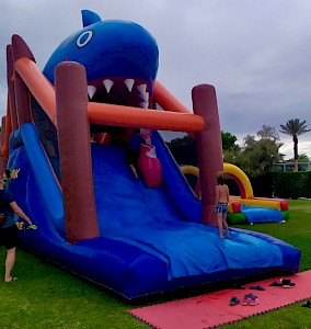 Parcours Gonflable obstacles REQUIN - 3995€ht