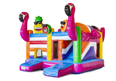 "MultiPlayground Gonflable ""FLAMANTS ROSE"""